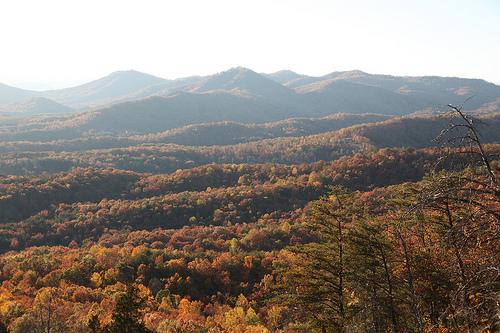 Box Creek Wilderness