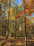 Fall & firewood