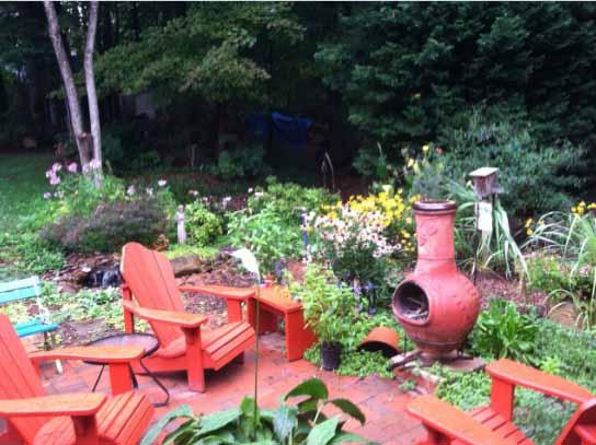 backyard_12